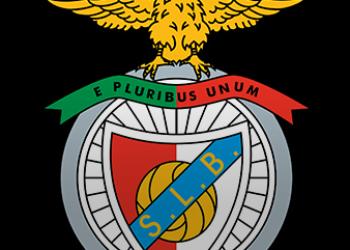 Fernando Tavares fez o balanço dos primeiros meses do futebol feminino do SL Benfica